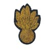 Officer's Cap Badge